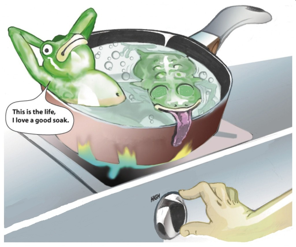 frog-in-boiling-water
